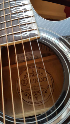 Carbon Fibre Guitar Close Up